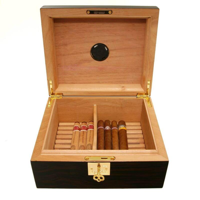 Cigar humidor Ashford Jr